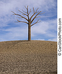 one lonely tree in a dry plowed field