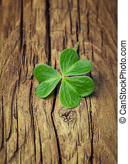 One lucky clover on a vintage wood background