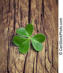 One lucky irish shamrock on a vintage wood background