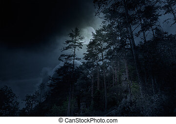 Mountain forest on a full moon overcast night