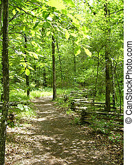 One of the Arboretum trails at Pinnacle Mountain State Park in Arkansas