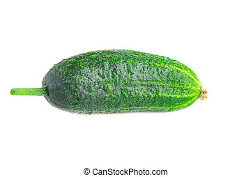 One organic small cucumber isolated on white background