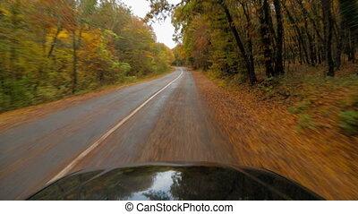 One Passenger Car Moving Along Asphalt Road In Autumn Forest