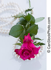 one pink rose with pearls