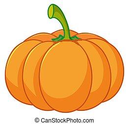 One pumpkin on white background