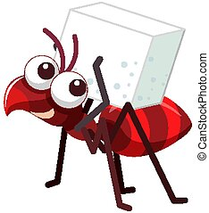 One red ant with sugar on white background