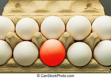 one red chicken egg in a package with white eggs
