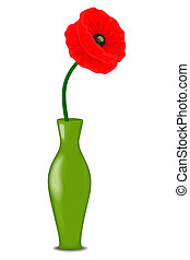 One red poppy flower in a vase