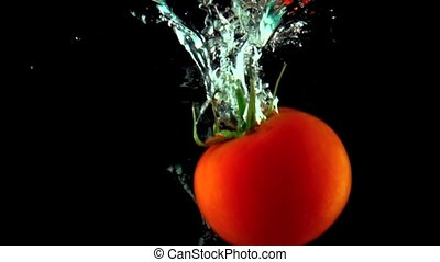 One red ripe tomato with green leaves falls under water super slow motion shot