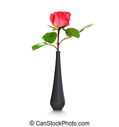 One rose into a black vase over a white background