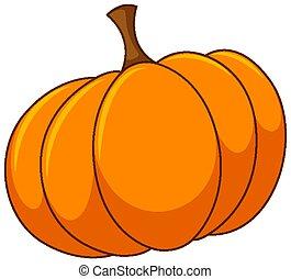 One round pumpkin on white background