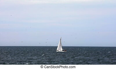 One sailing boat on the sea horizon