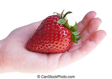 One strawberry in hand, isolated on white