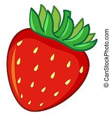 One strawberry on white background