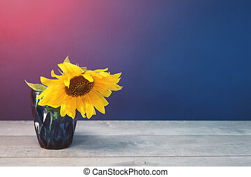 one Sunflower in blue water glass on blue background