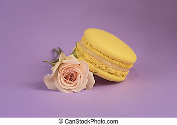 One tasty yellow macaron on the purple background.