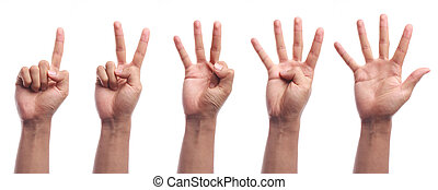 One to five fingers count hand gesture isolated on white...