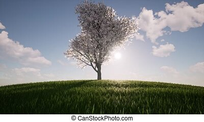 One tree growth Ecology Agriculture concept environment Nature spring season Environmental Green grass hill