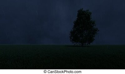 One tree in the background of the storm 4k