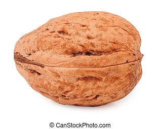 one walnut isolated on white background