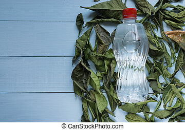 water bottle among dry faded leaves