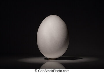 egg - one white egg
