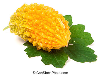 one yellow momordica or karela isolated on white background...