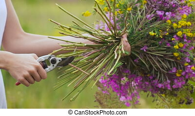 One young woman cutting flowers with a clipper, making a...