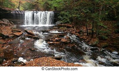 Oneida Falls Loop ? Ricketts Glen Pennsylvania - Seamless...
