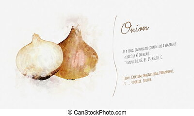 The image of Onion on a white sheet of paper, accompanied by a text describing its energy value and useful properties.