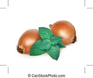 Onion and nettle, folk medicine, illustration, isolated on white background