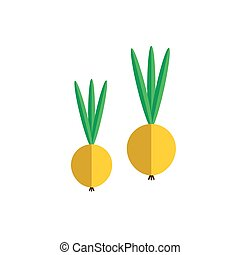 Onion color icon flat vector vegetable