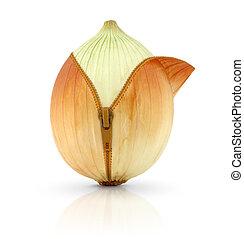 Onion, creative concept - Ripe onion with zipper, creative...