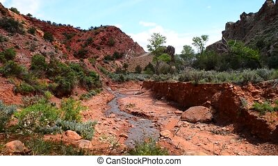 Onion Creek Moab Utah - Spring in the Canyon Onion Creek...