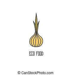 Onion hand drawn on white background.