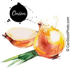 onion., kéz, húzott, vízfestmény festmény, white, háttér.