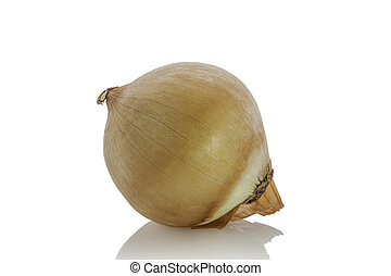 Onion on a white background.
