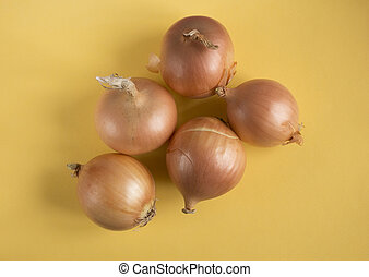 Onion on yellow paper background