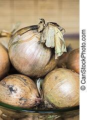 Onion ordinary
