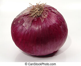 Onion - Photo of an Onion