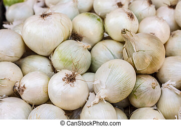 Onion pile on the local market. White onions crop. Background