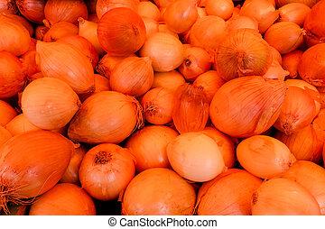onion., résumé, seamless, modèle fond
