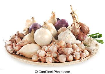 onion, shallots and garlic