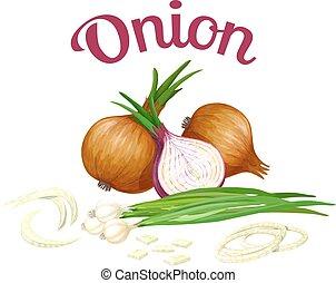 onion., stile, fatto, illustrazione, realistico, vettore