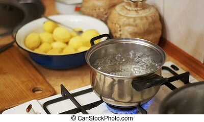 Onions Flies into a Pot of Boiling Water in the Home Kitchen. Slow Motion.