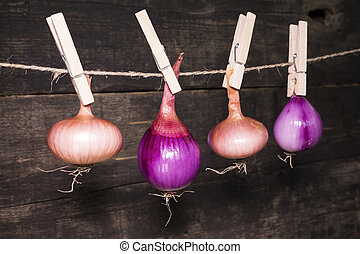 Onions hanging on a rope