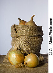 Onions in a bag