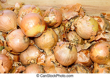 onions in a crate at market
