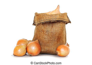 onions in a small bag