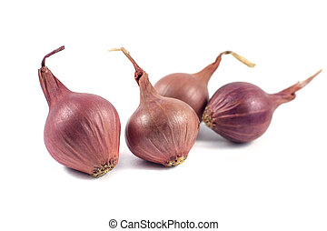 Onions isolated on white background.